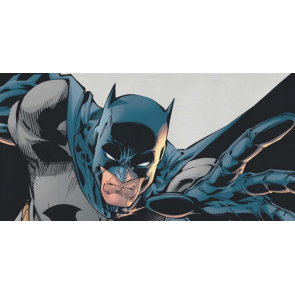 Serie Batman - immagine 1
